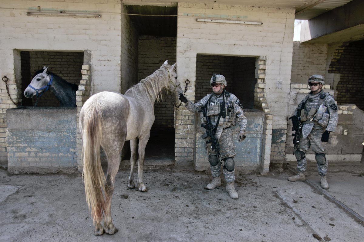 u.s. army soldiers from blackhawk company, 1st battalion, 23rd infantry regiment, search a livery stable, baghdad, iraq, 2007.