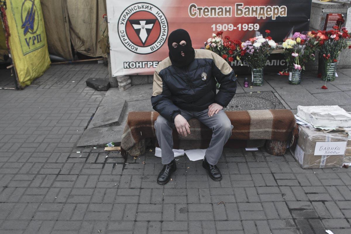 a masked protester, kiev, ukraine, feb. 25, 2014.
