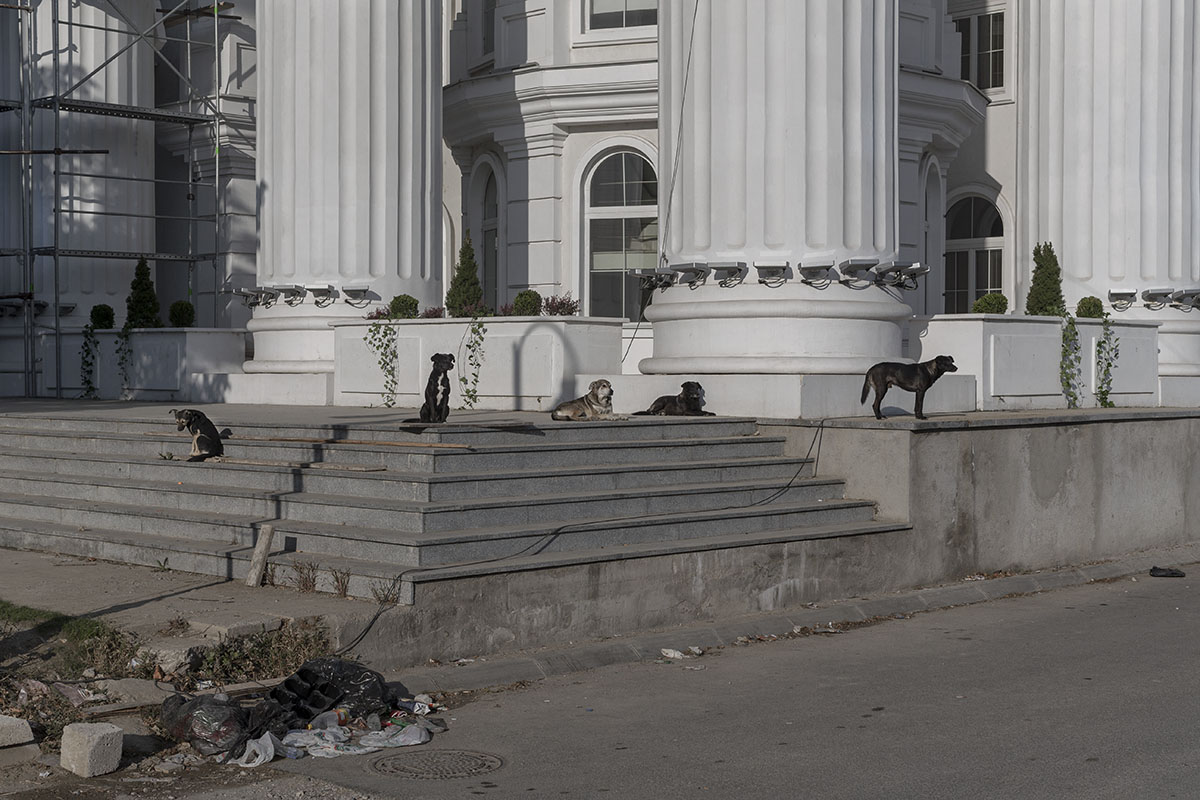 Street dogs bask in the morning sun as they sit at the entrance of a neo-classical building, Skopje, North Macedonia, Oct. 2, 2018. Dozens of historic kitsch style buildings and hundreds of monuments of all sizes were erected in the North Macedonian capital by the then nationalist government in the 2010's, with the aim of giving the city a 'more classical appeal' and to tie the country to Alexander the Great and Ancient Greek history. The project, dubbed 'Skopje 2014', was a point of contention in a long running dispute with neighboring Greece.