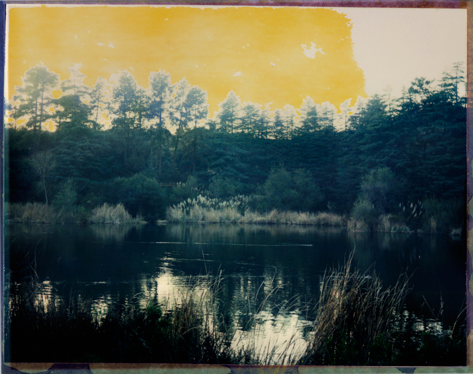 photographed with an experimental Polaroid 4x5 film never manufactured because of the closing of the Polaroid factory.