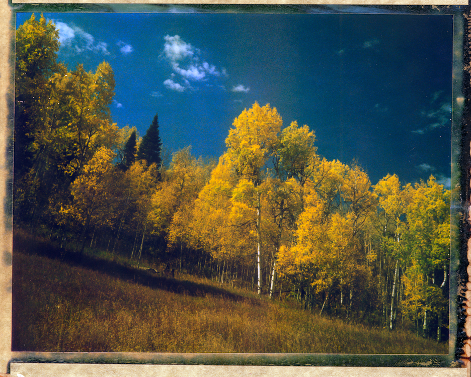 Title - Aspen, ColoradoArchival Pigment Print40{quote}x30{quote} Edition of 10 • 24{quote}x20{quote} Edition of 25