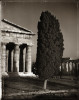 Temple to Neptune and Cypress - Paestum - Campania, ItalyArchival Pigment Print40{quote}x30{quote} Edition of 10 • 24{quote}x20{quote} Edition of 25
