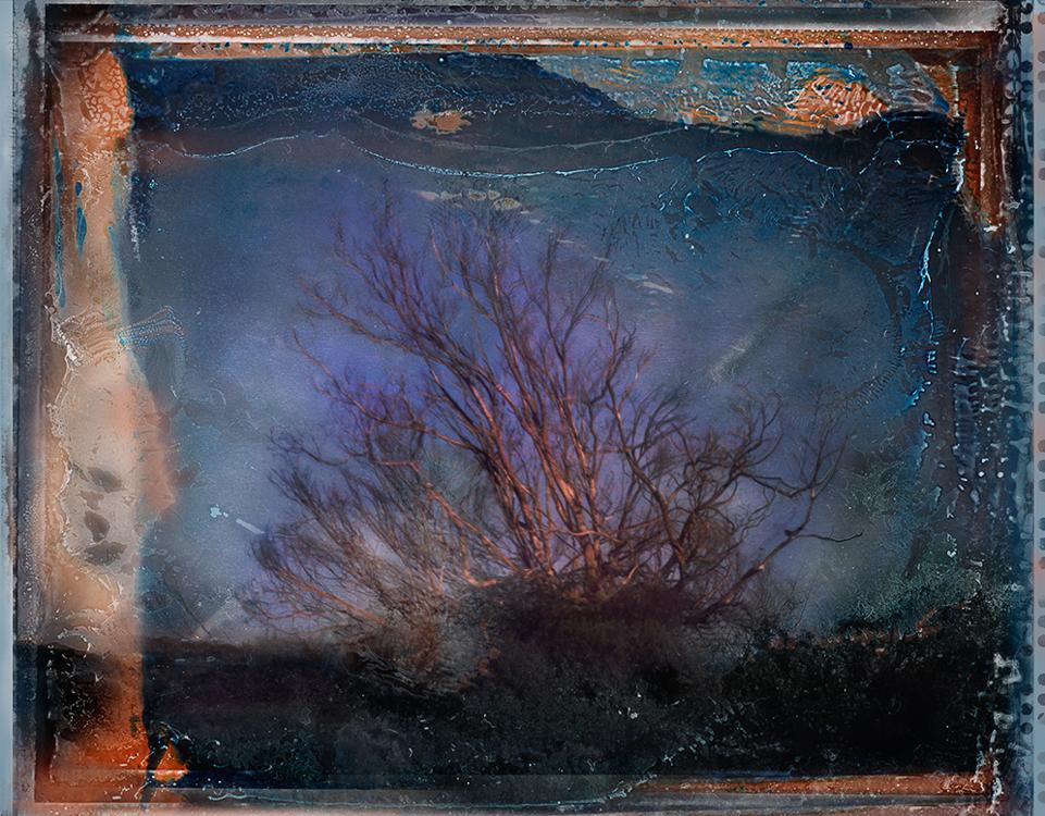 Skeleton on Highway1 #1Archival Pigment Print40{quote}x 30{quote} Edition of 10 • 24{quote}x 20{quote} Edition of 15