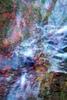 foliage-oct-15-raw18