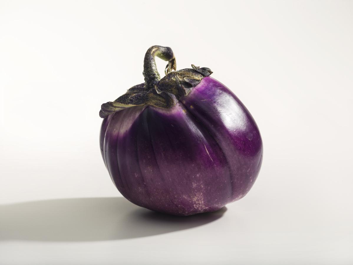 EggplantFinal