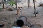 Haiti_Communities-23
