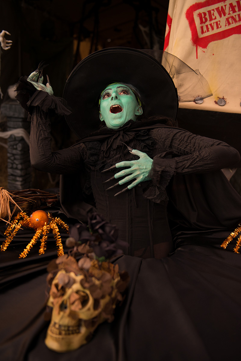 Wicked Witch of The West Living Table