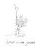 sketch_title_page_Isabell