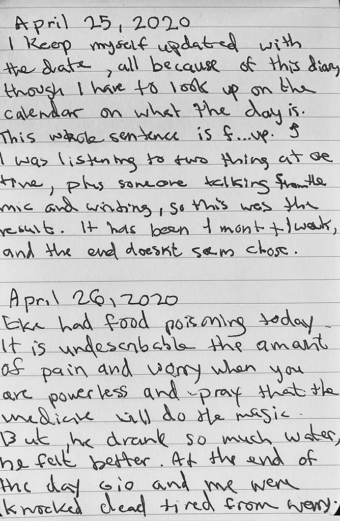 Diary_73