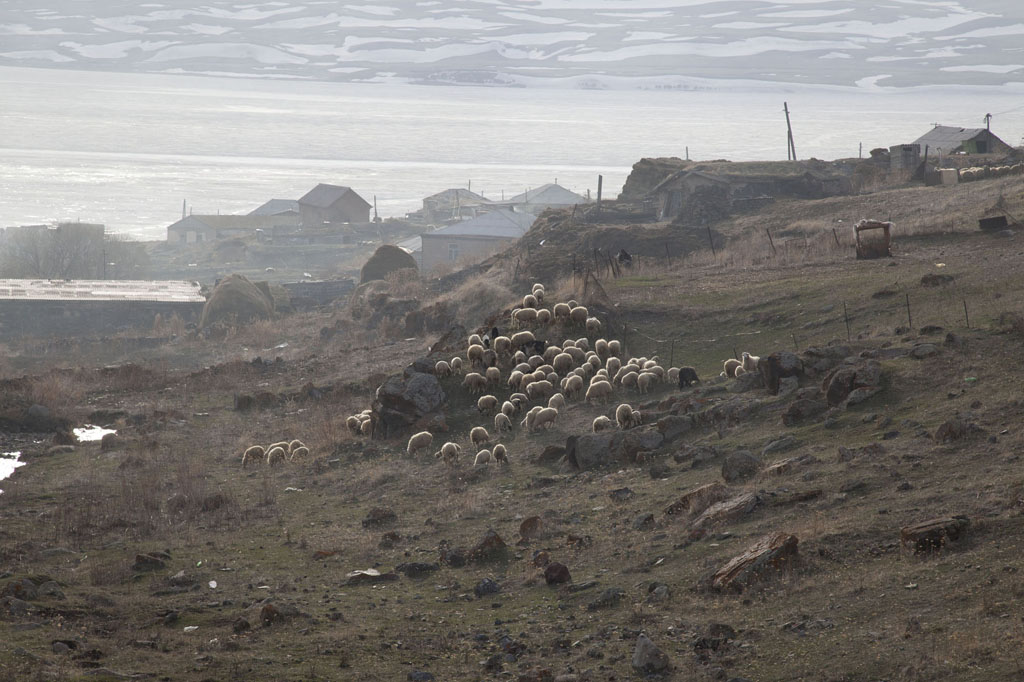 Georgia, 2012. Samtskhe – Javakheti region, Poka Village.Near the entrance into the Javakheti region.