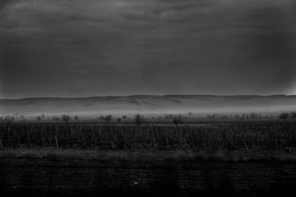 GEORGIA. 2009. Kakheti Region. Landscape.