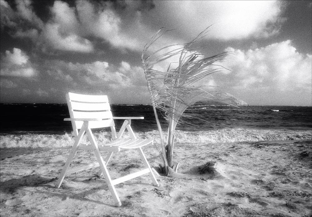 Island-Dream