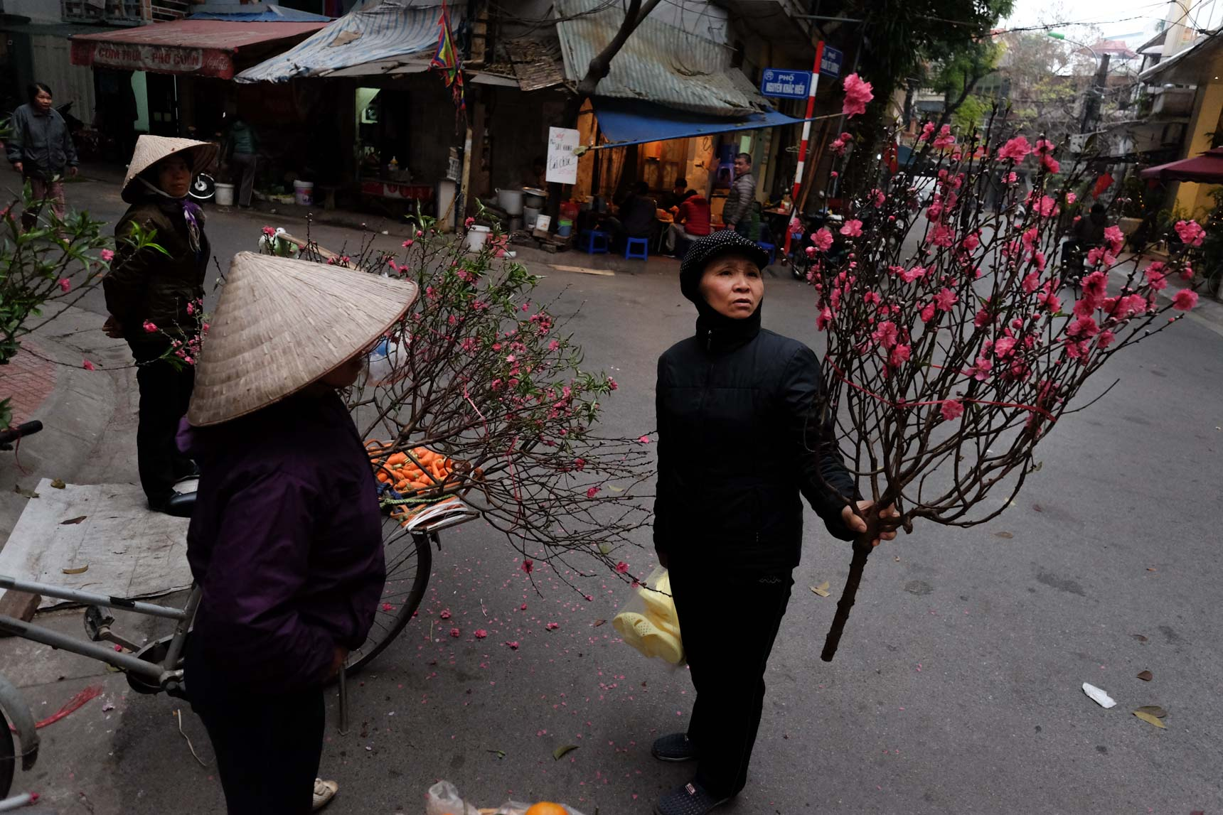 Shopping for Flowers during Tet New Year