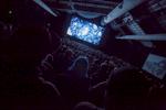 Audience_Herzog_byPamelaGentile_003