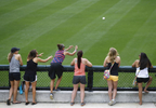 Fans reach for a baseball as they watch batting practice before a game between the Miami Marlins and the Minnesota Twins in Fort Myers, Fla.