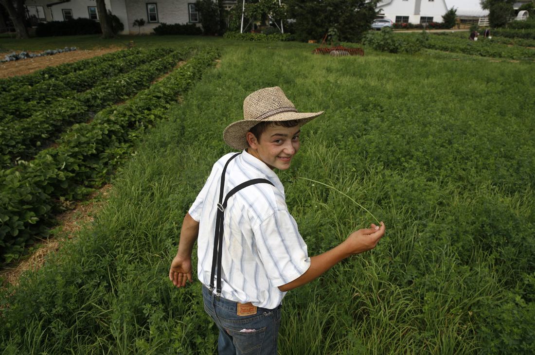 A boy belonging to an Old Order Mennonite family walks in a field at his family's farm in New Holland, Pa.