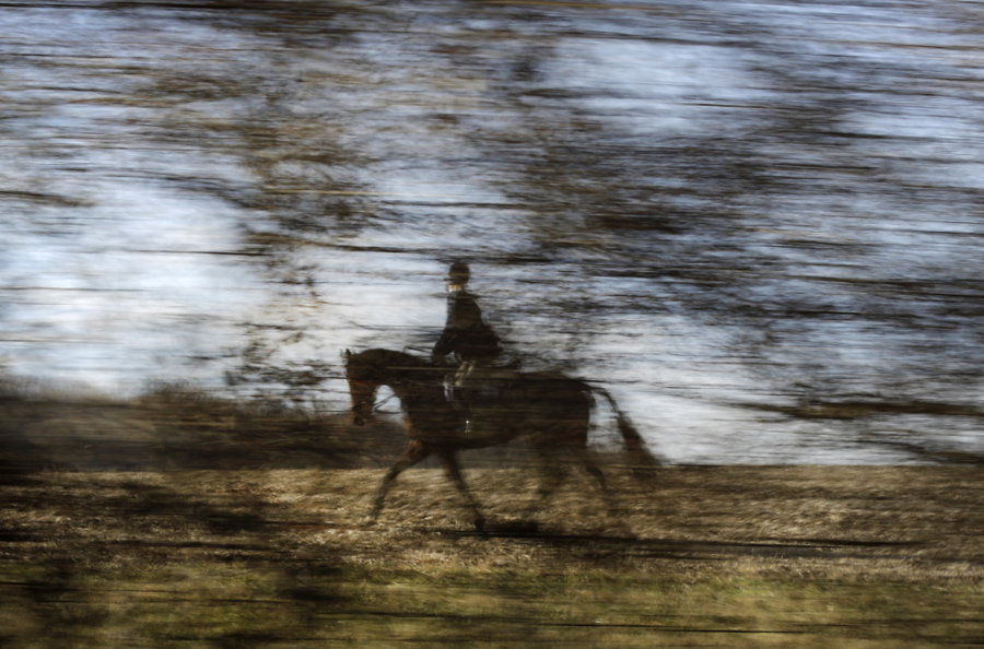A member of the Elkridge-Harford Hunt Club is seen through a layer of foliage during a fox hunt in Monkton, Md.