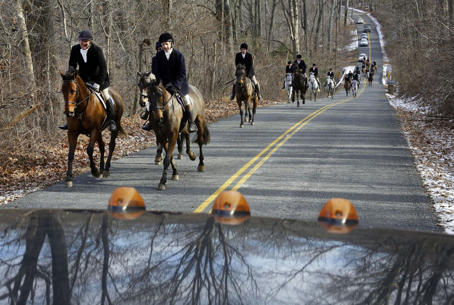 Members of the Elkridge-Harford Hunt Club make their way around car traffic during a fox hunt in Monkton, Md.