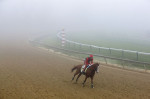 Kentucky Derby winner California Chrome, with exercise rider Willie Delgado aboard, rounds a turn through a thick layer of fog at Pimlico Race Course.