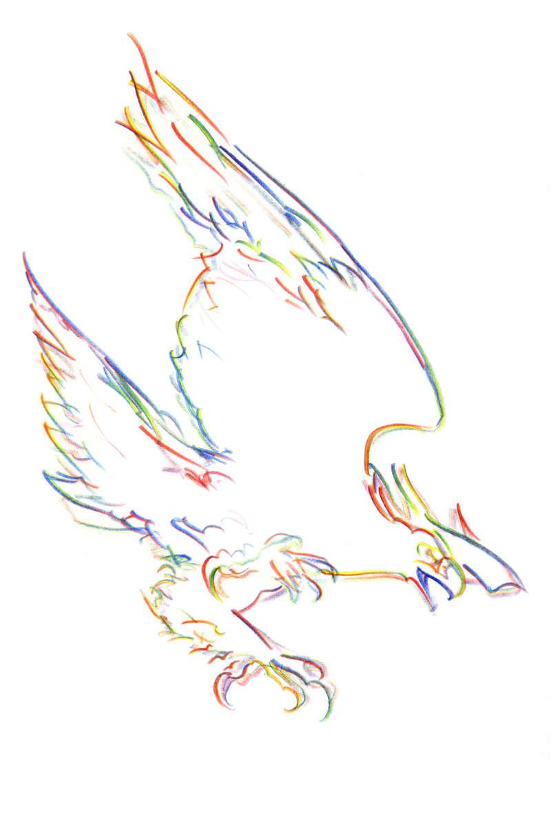eagle_NP_R2