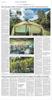 Newsstand_019