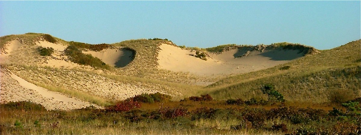 Dunes in the Peaked Hill Bars Historic District