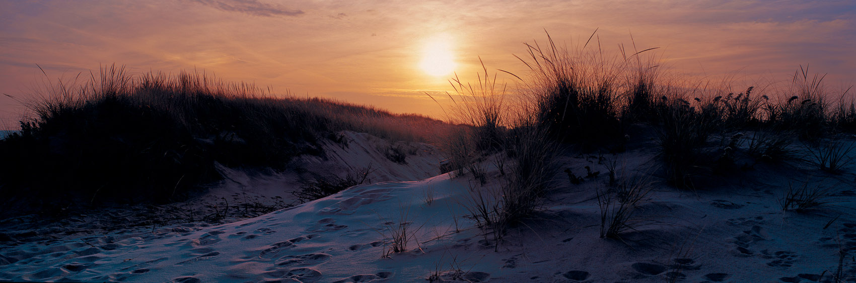 AtlanticDunes_Sunset