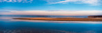 Sandbar_Seagulls