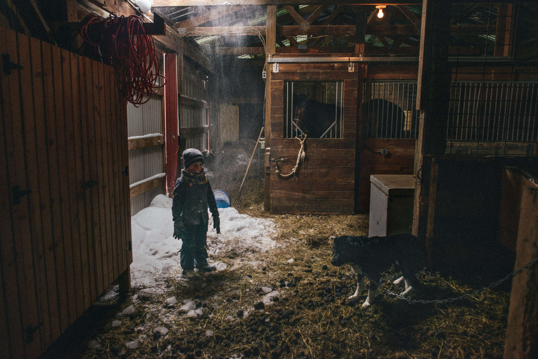 This project is an ongoing exploration of the beauty, challenges and interconnectivities of life on small, family-run farms in upstate New York.
