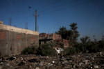 Two birds are seen scavenging for food in a dumpsite in Sakkara in Egypt.