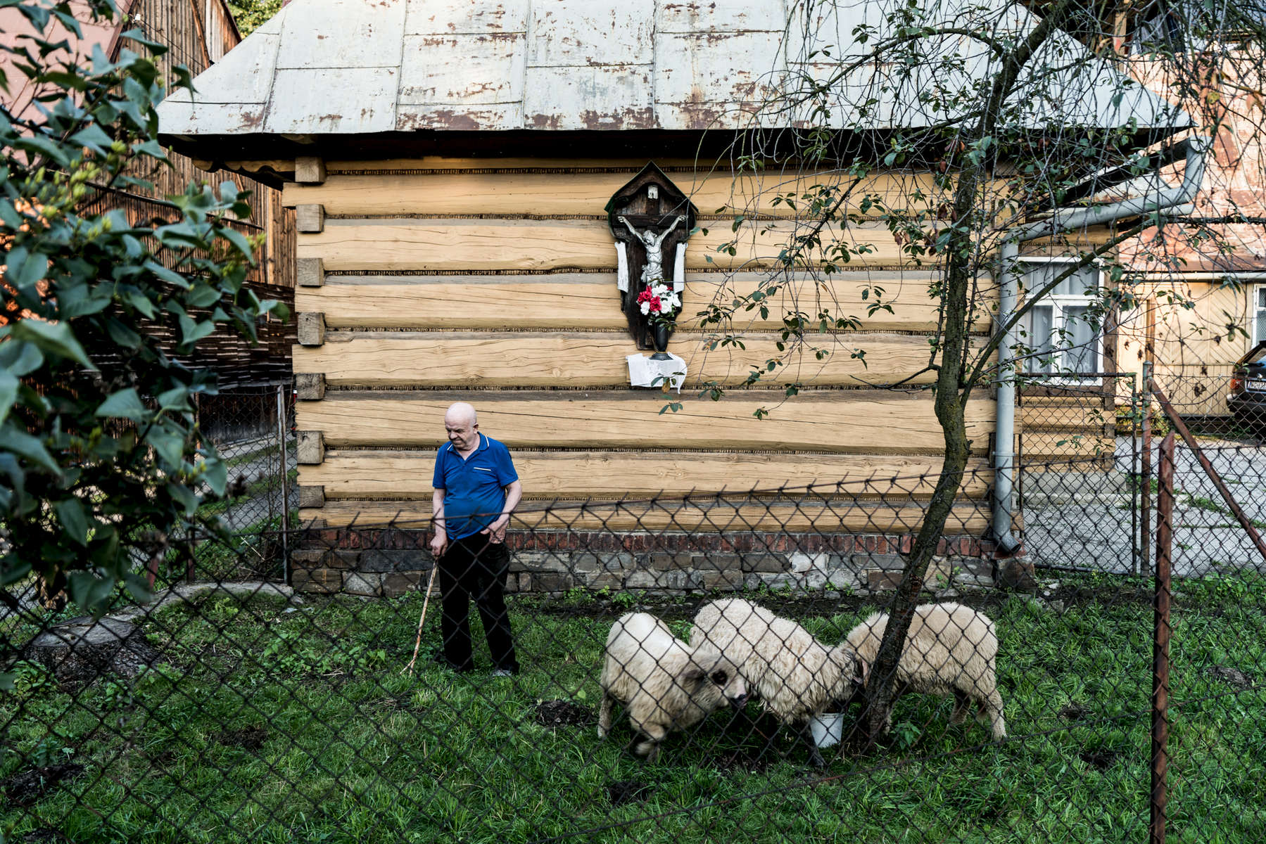 A shepherd is standing in front of his wooden house in Poronon in southern Poland while his sheep are feeding.
