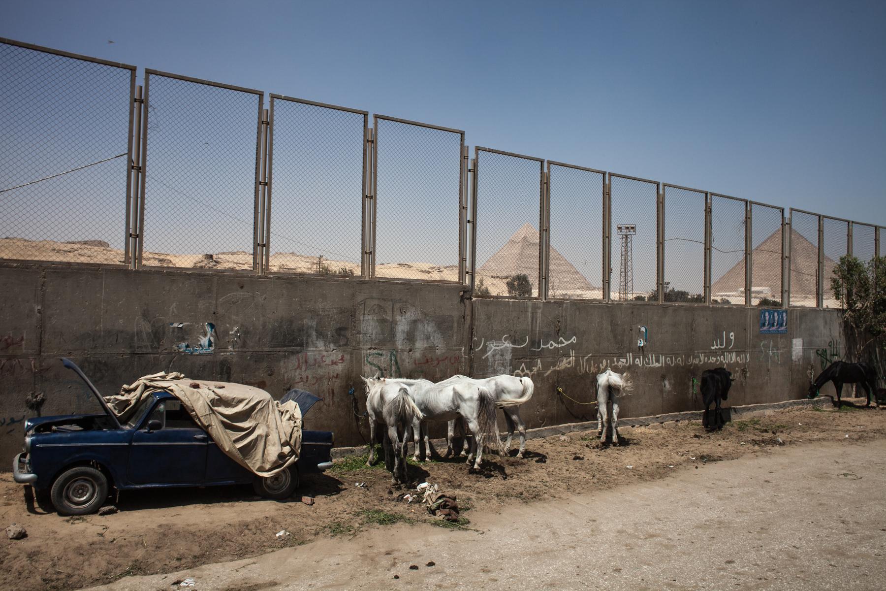 Giza/Egypt