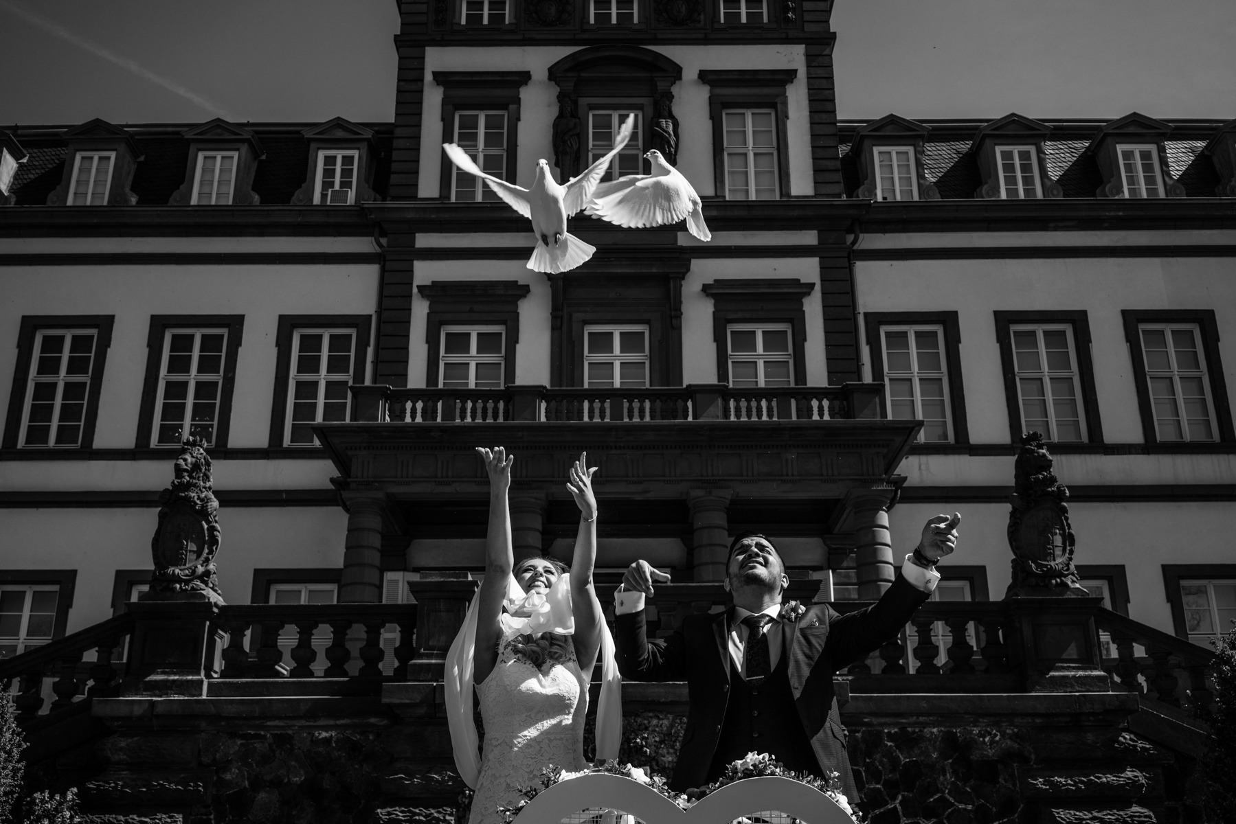 In front of Castle Philippsruhe in Hanau/Germany a bride and groom release white pigeons during their wedding because the birds are a symbol of love due to their faithfulness towards their partners. Not all weeding pigeons find their way home after weddings. Some get lost and join flocks of city pigeons. Since they have been fed by breeders all their life, most homing pigeons have a short life once they end up on the streets.