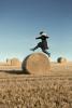 Hazel leaps over a hay bale