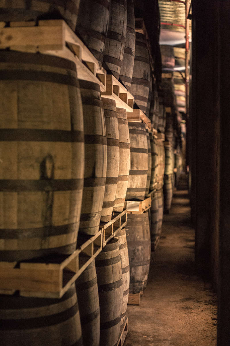 Havana Club distillery barrels