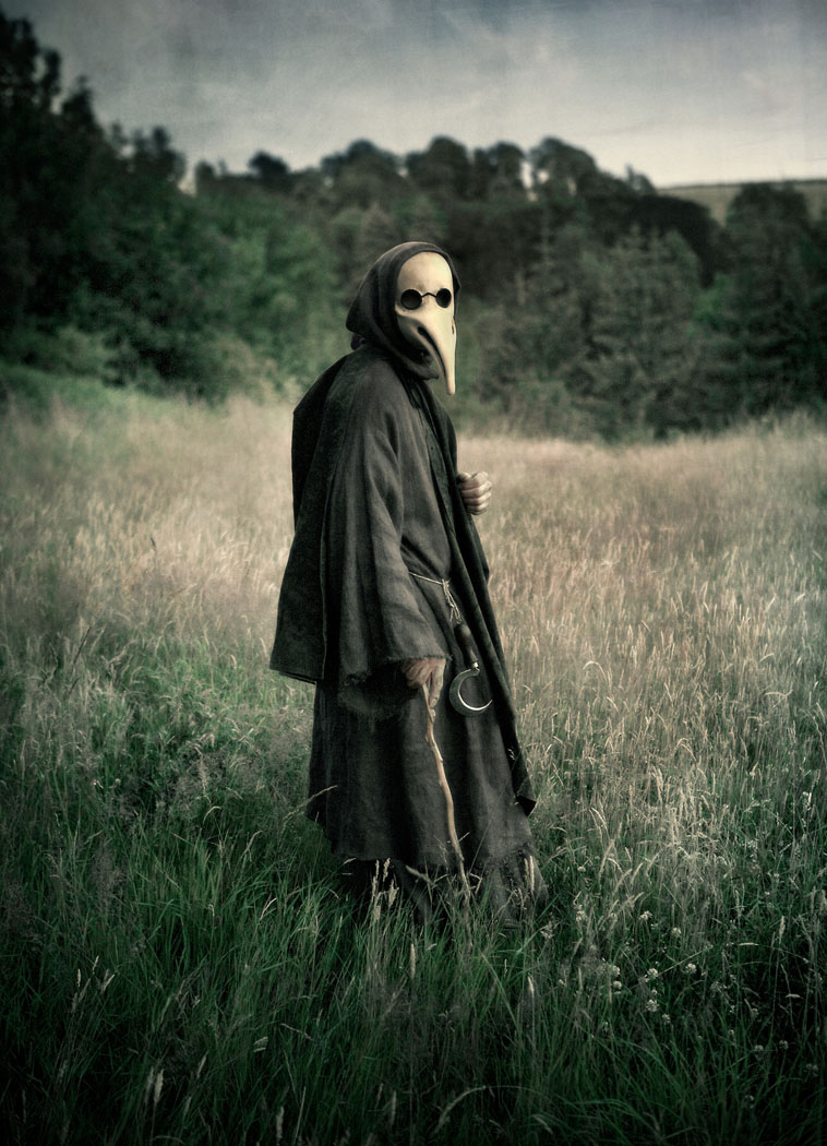 a plague doctor standing in a field wearing his mask