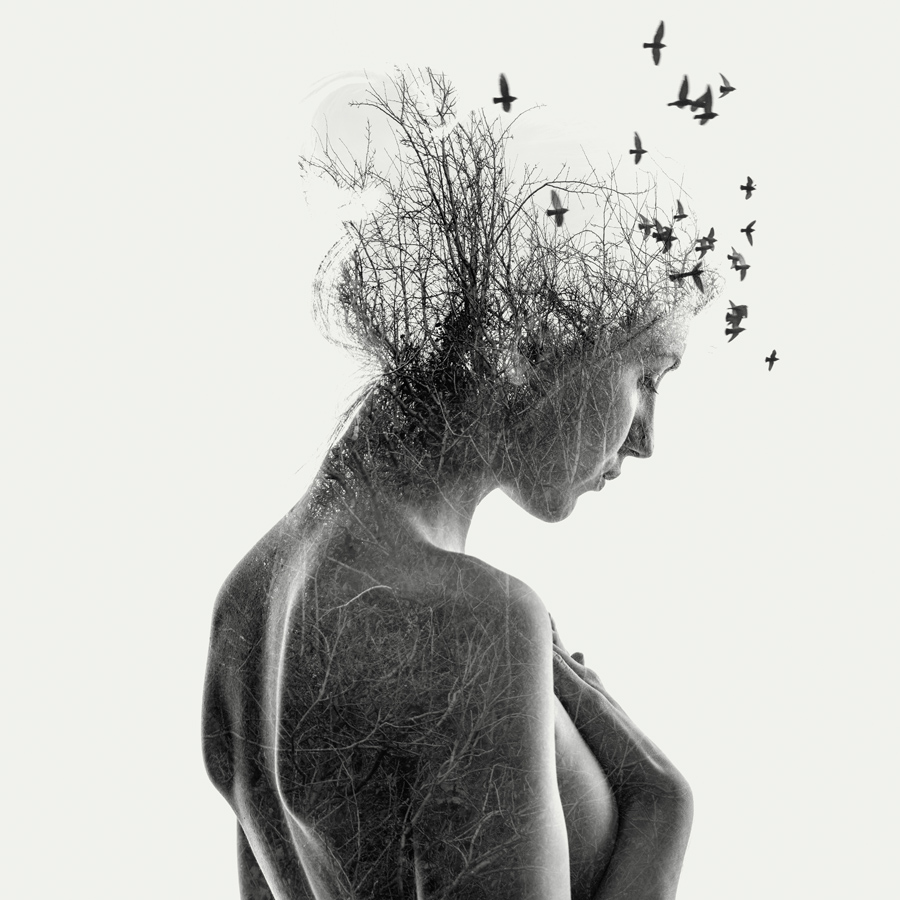 double exposure nude girl with branches and birds. Purchase at Artfinder