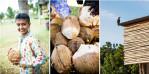 coconutsNEON