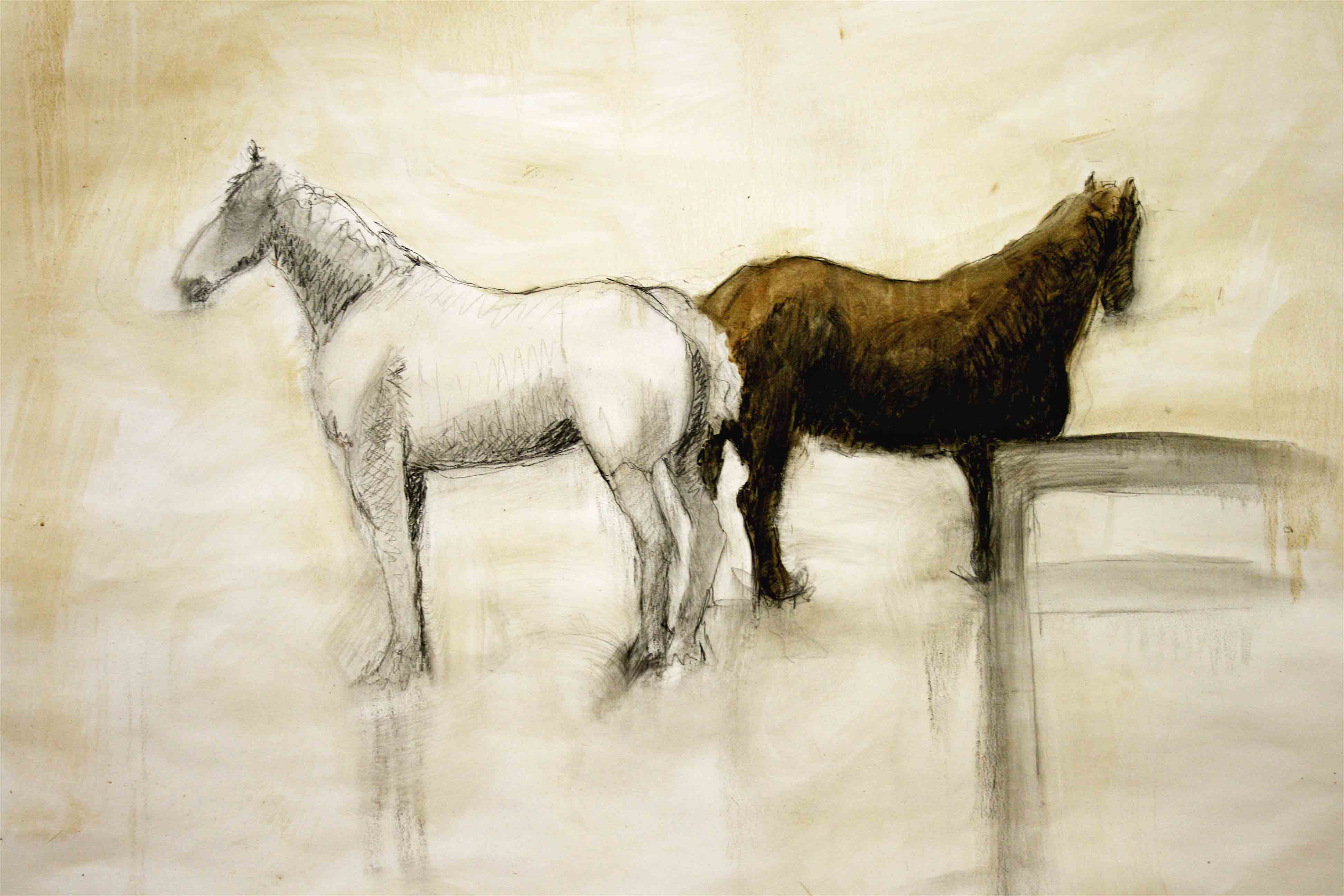 Pair 2, graphite, oil, solvent and wax on paper, 30{quote}x42{quote}, sold