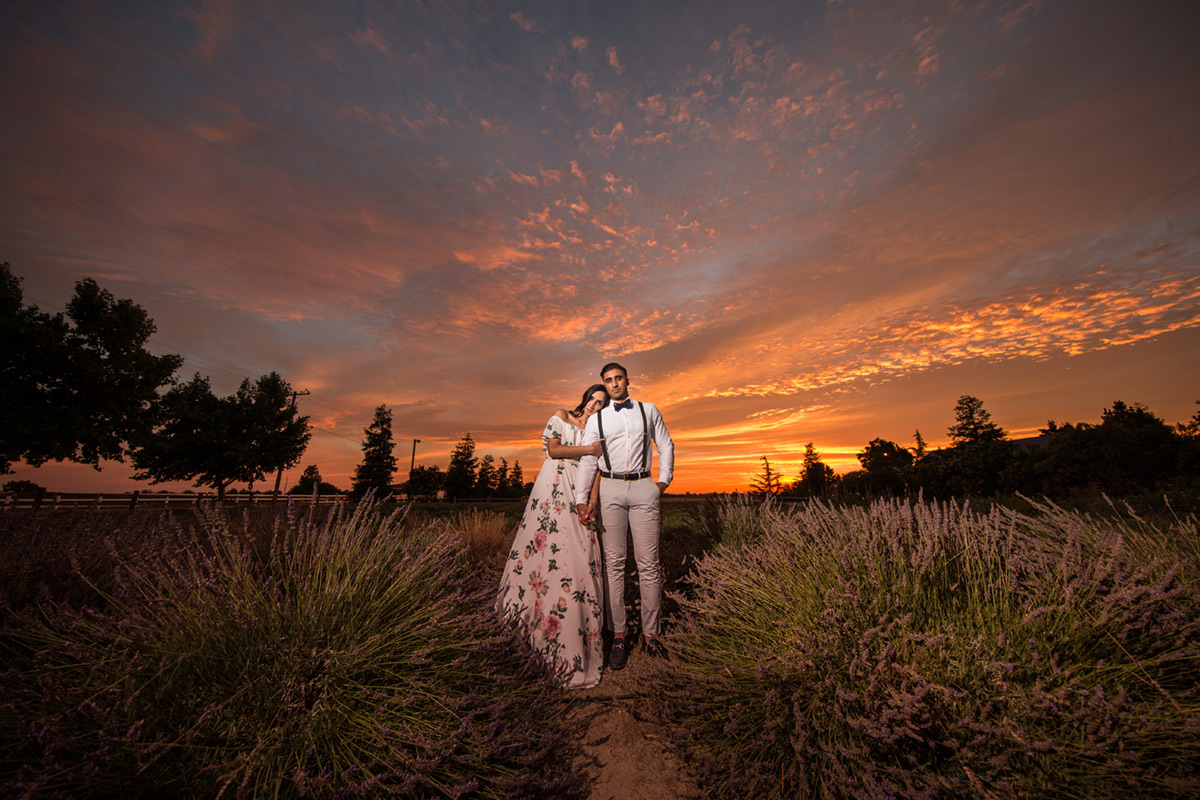 indian engagement session at pageo lavender farn in turlock during sunset