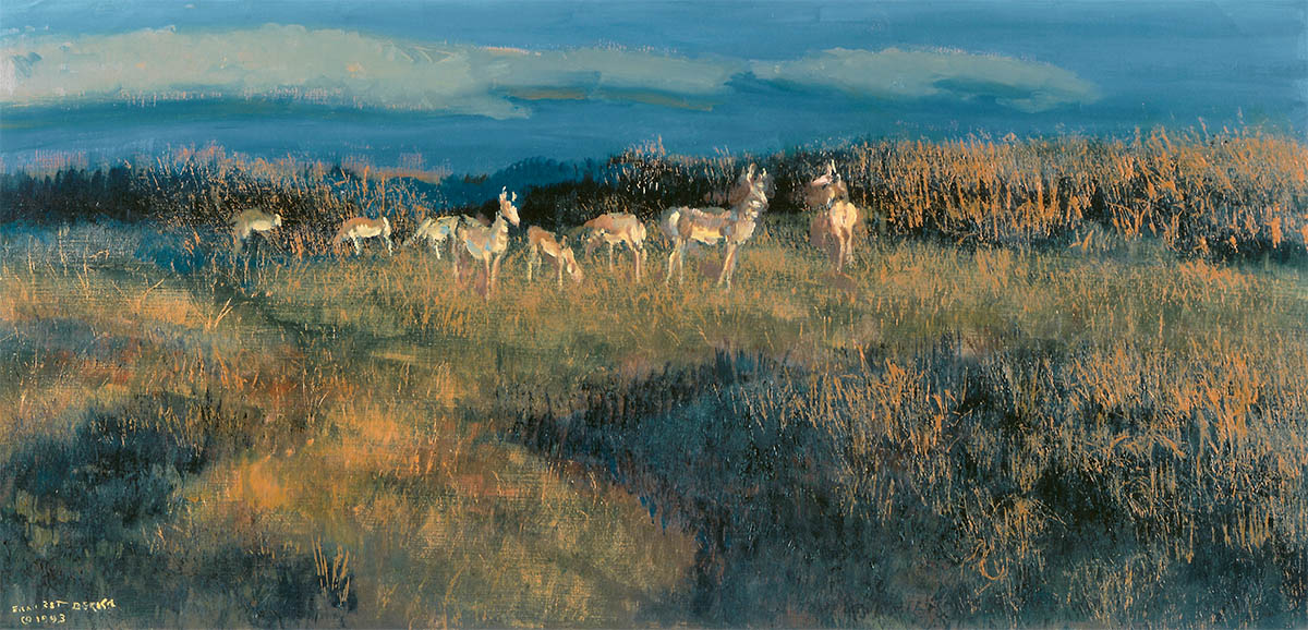 A small herd of antelope at sunset
