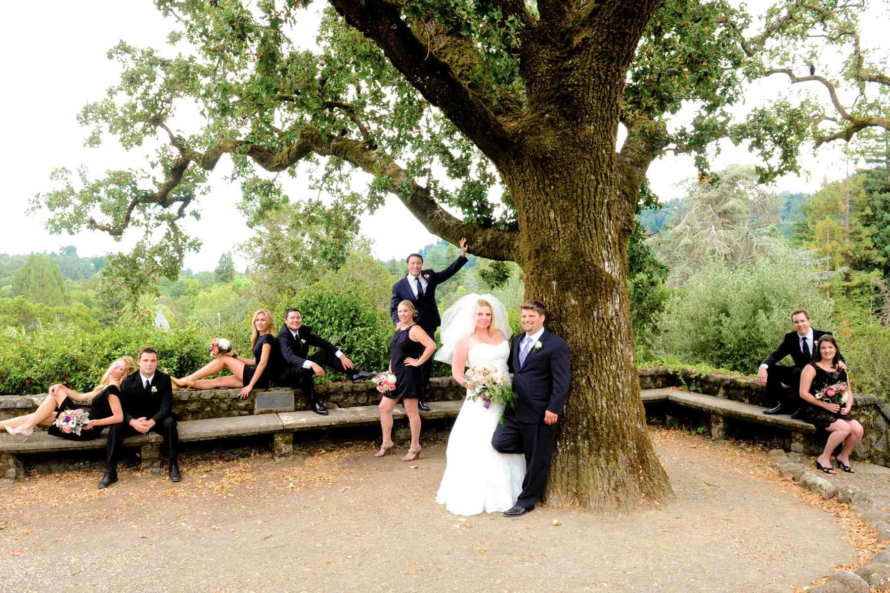 San Francisco Bay Area Destination Wedding Photographer San Francisco Theologial Seminary Wedding Image / Photo