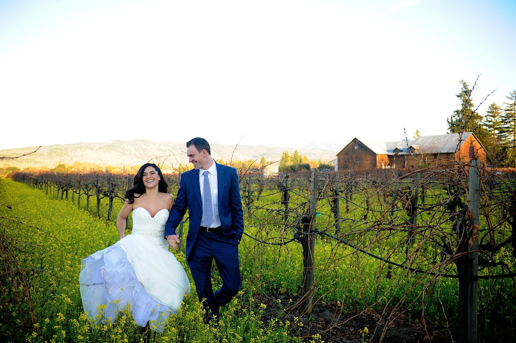 napa_valley_wedding_photographer__villagio_vintage_estate_wedding_052