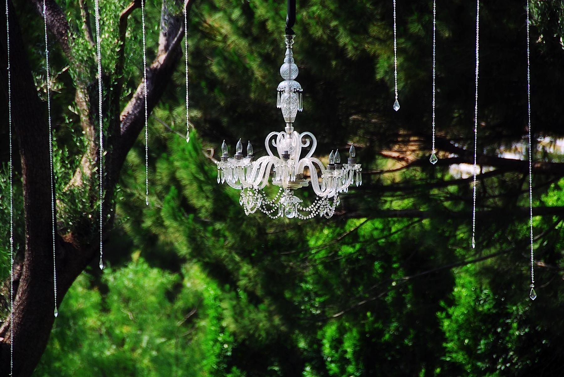 santa_barbara_wedding_photographer_hummingbird_nest_ranch_wedding_029