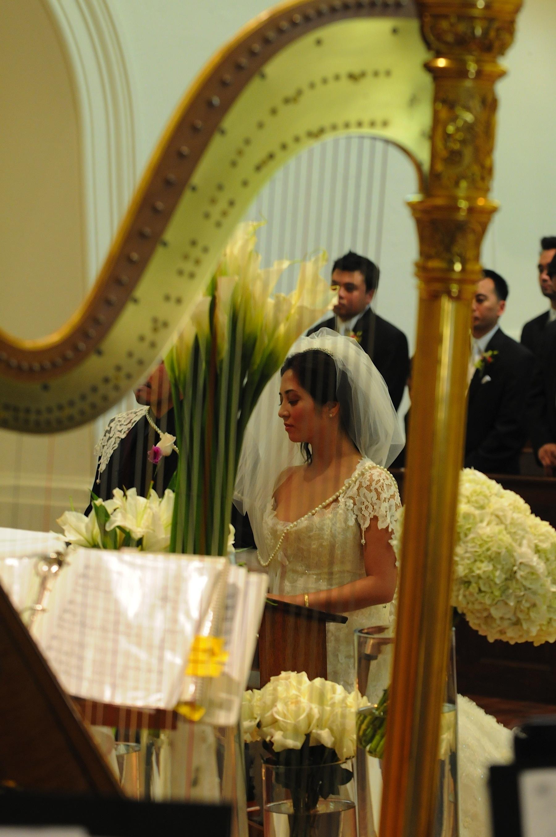 sonoma_wedding_photographer_viansa_winery_wedding_024