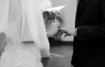 sonoma_wedding_photographer_viansa_winery_wedding_026