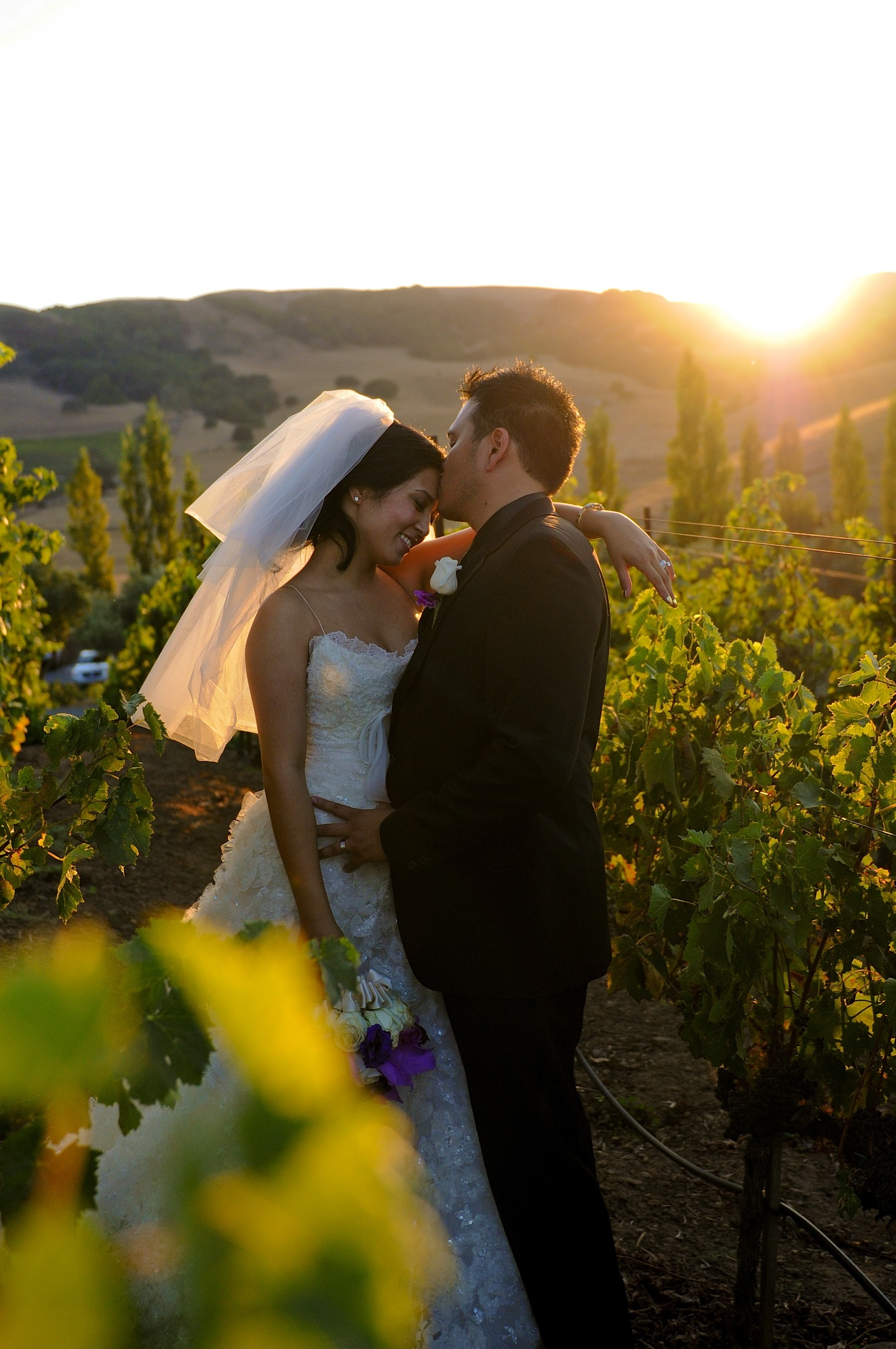 Viansa Winery Wedding Photographer.  Specializing in Destination and Elopement Photography in Napa, Sonoma, Wine Country Wedding Photography