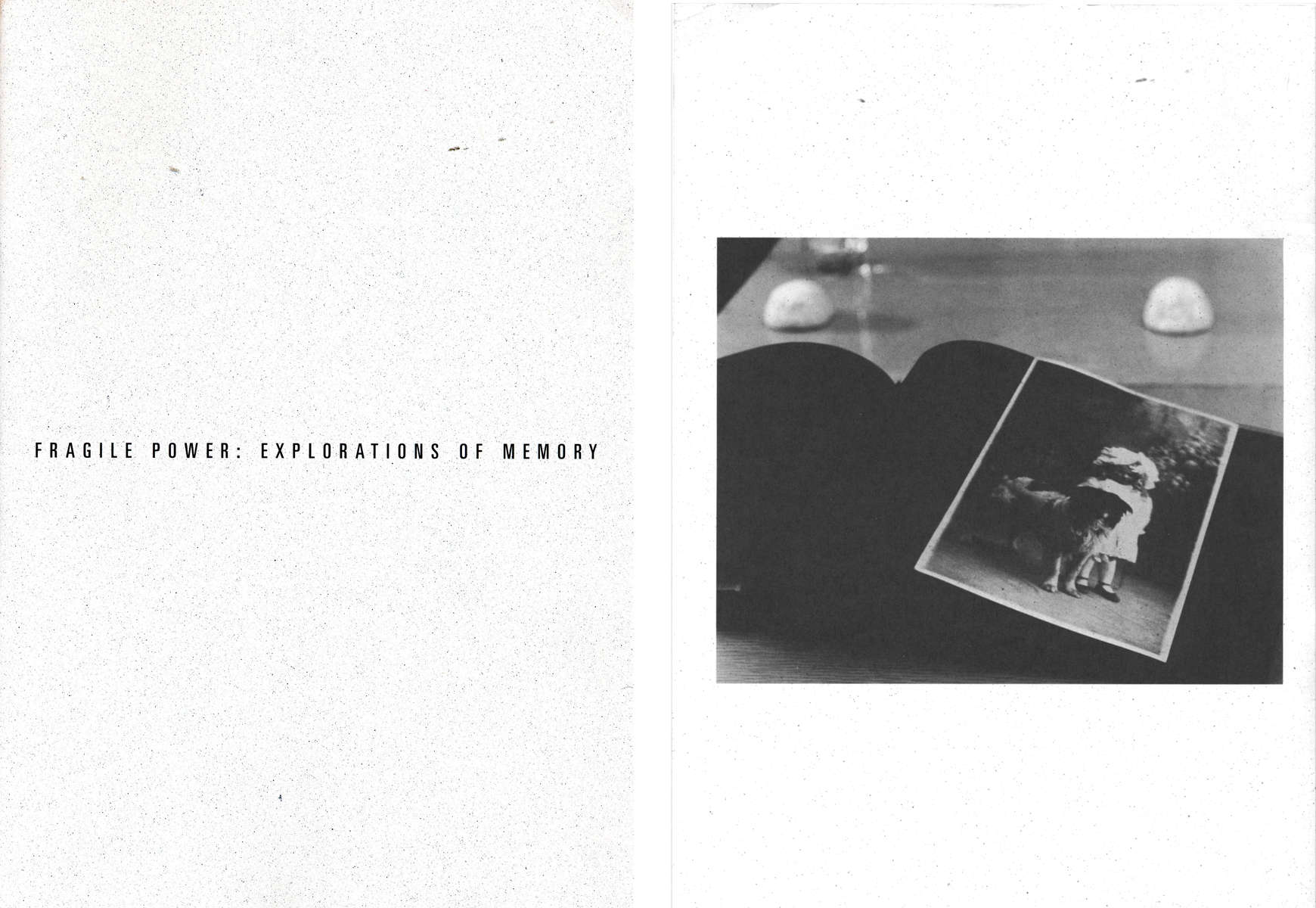 Fragile Power: Explorations of Memoryexhibition catalogue1993curated by Mary J. Olmsted and Daniel L. ShacterThe Newton Art Center, Newtonville, MAback cover © Anne Turyn