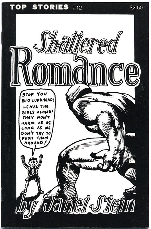 Shattered Romance© Janet Stein