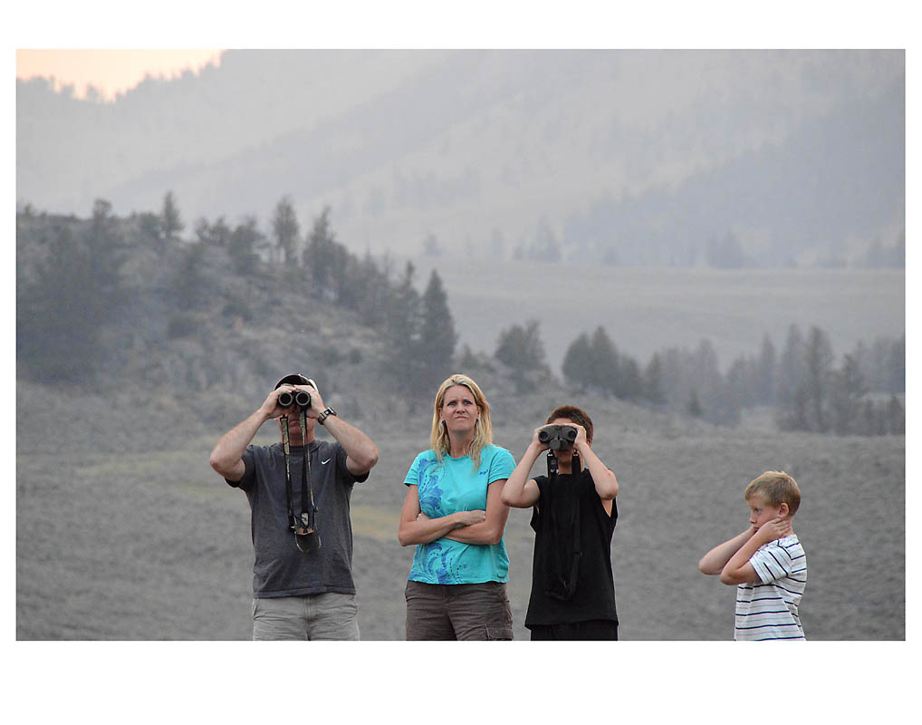 photo © Anne Turynlooking for wolves in Yellowstone National Park